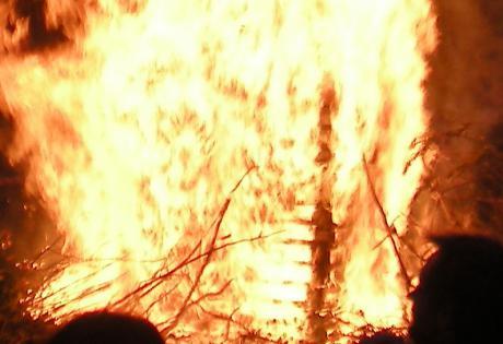 Ingen beskatning eller forbud mod brændeovne
