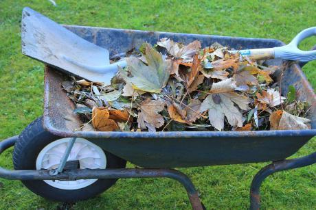 Seks gode råd inden du sender haven i vinterhi