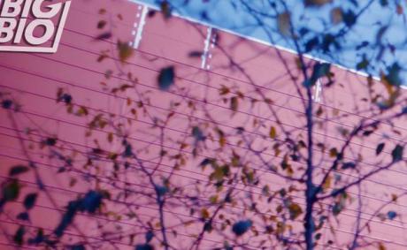 Danmarks første bæredygtige biograf er på vej