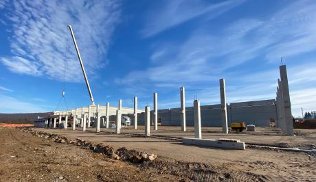 Bjelin bygger verdens største trægulvfabrik